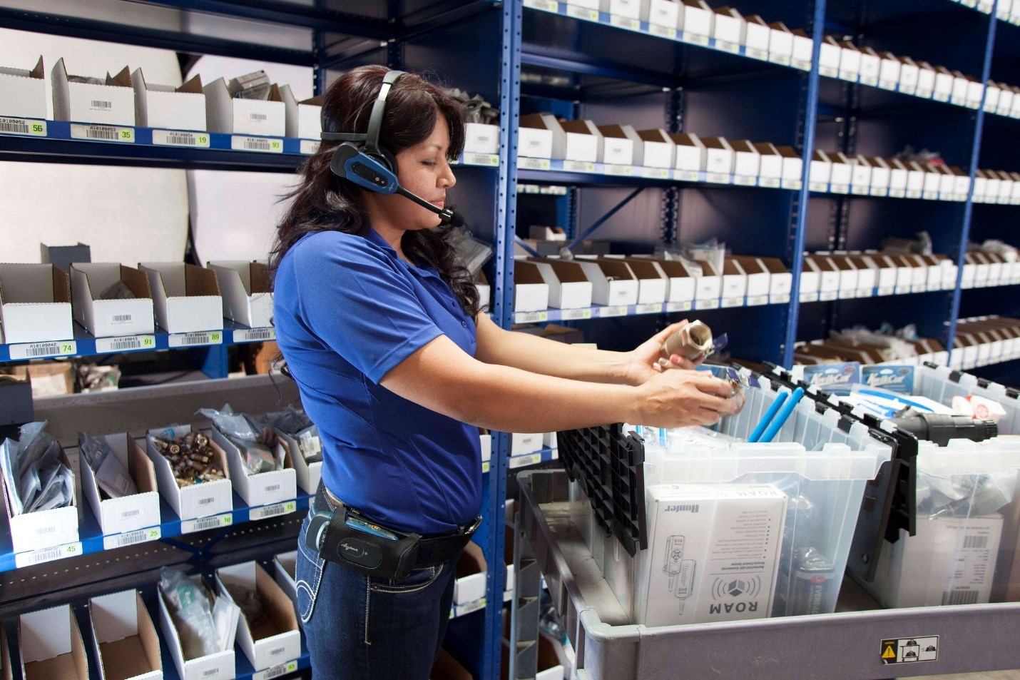 Voice in the Multi-Lingual Warehouse